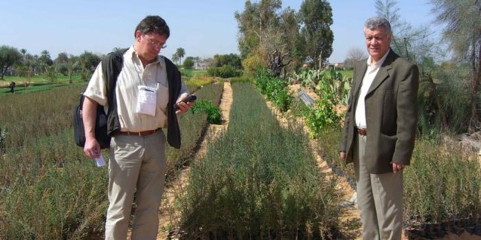 Projet de plantations sylvo-pastorales en Afrique du Nord